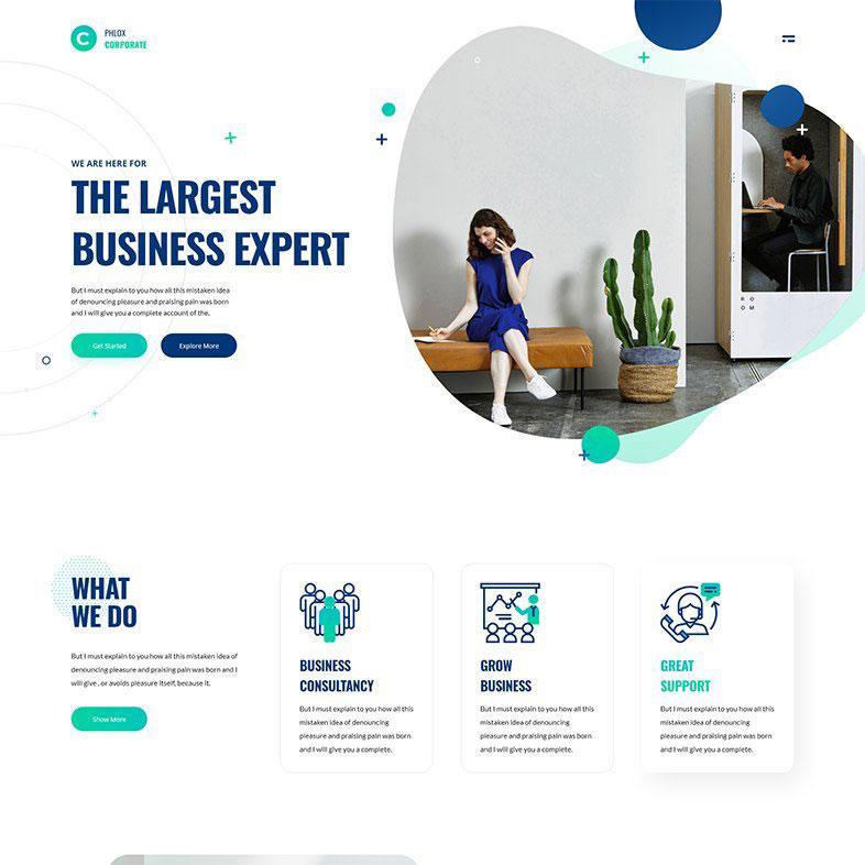 sade kurumsal web sitesi tasarımı